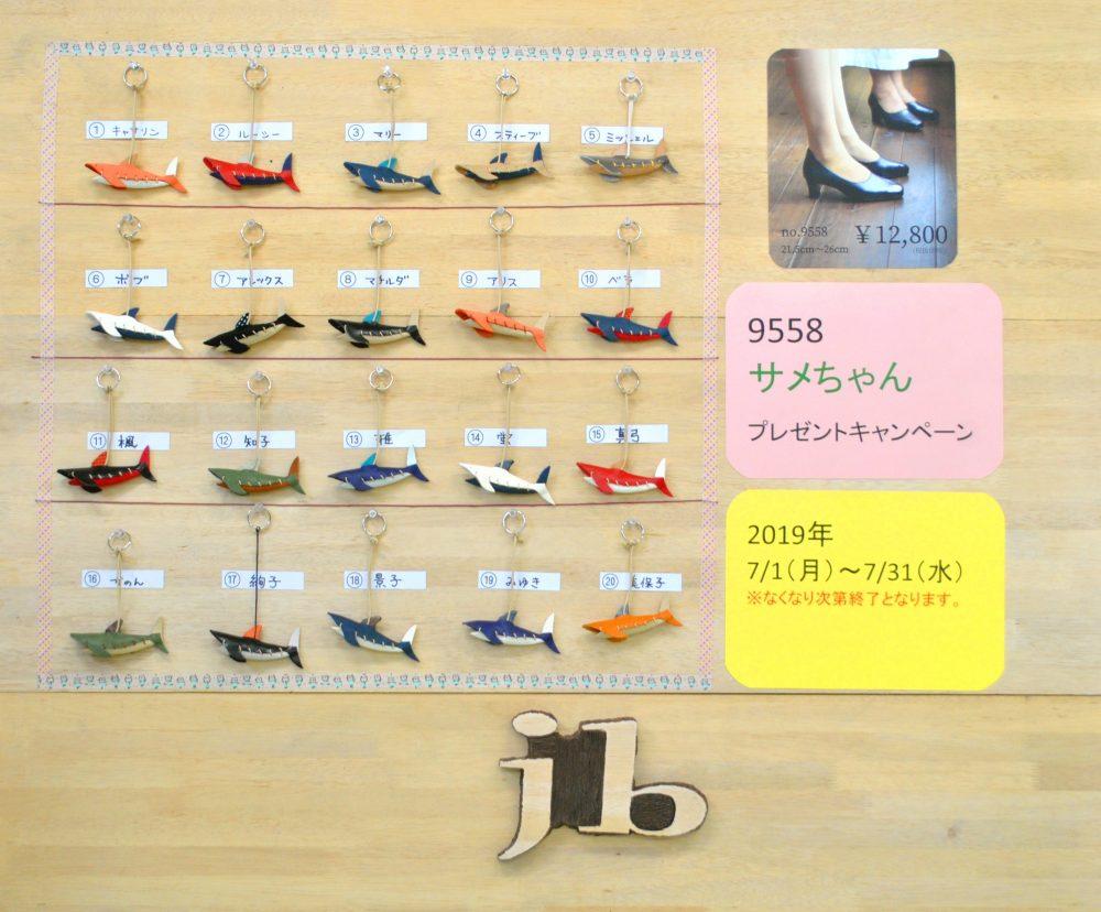 9558 サメちゃんキャンペーン