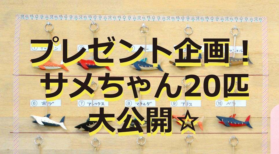 【期間限定プレゼント!】 サメちゃん20匹をご紹介!!